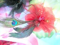 peacock-feather-hair-accessory-001-13